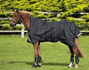 horse turnout blanket