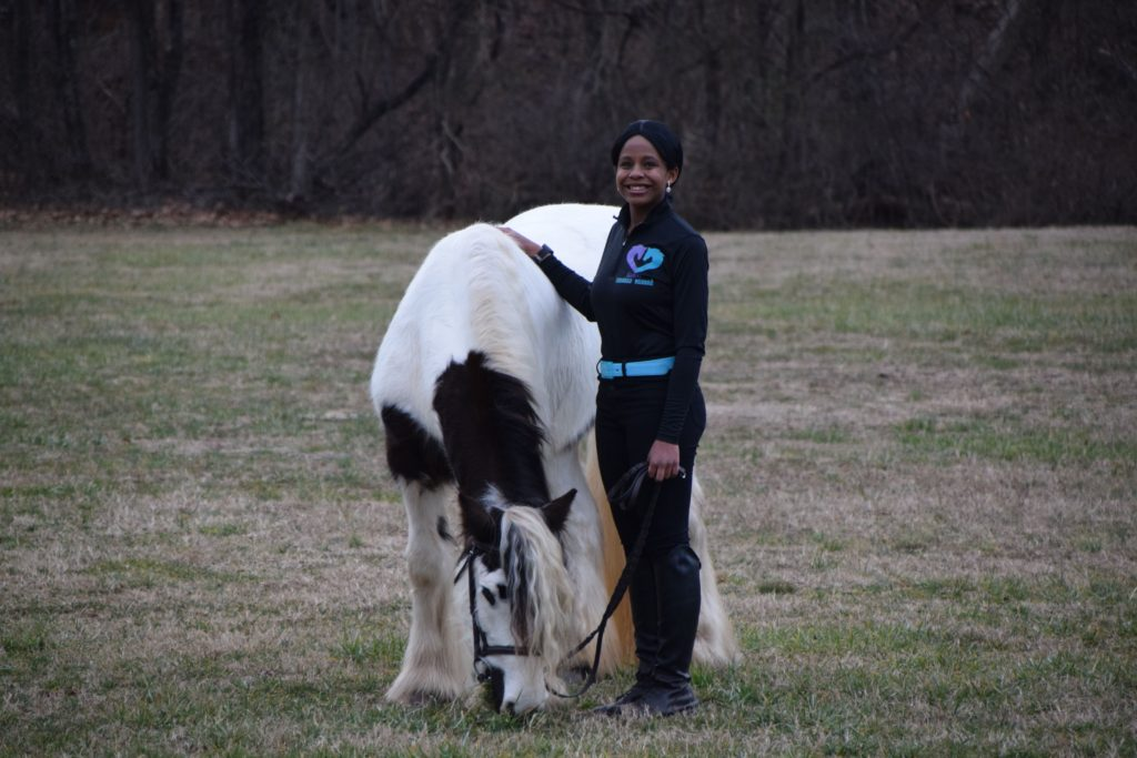 equestrian diversity