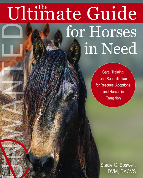 Ultimate Guide to Horses in Need Book