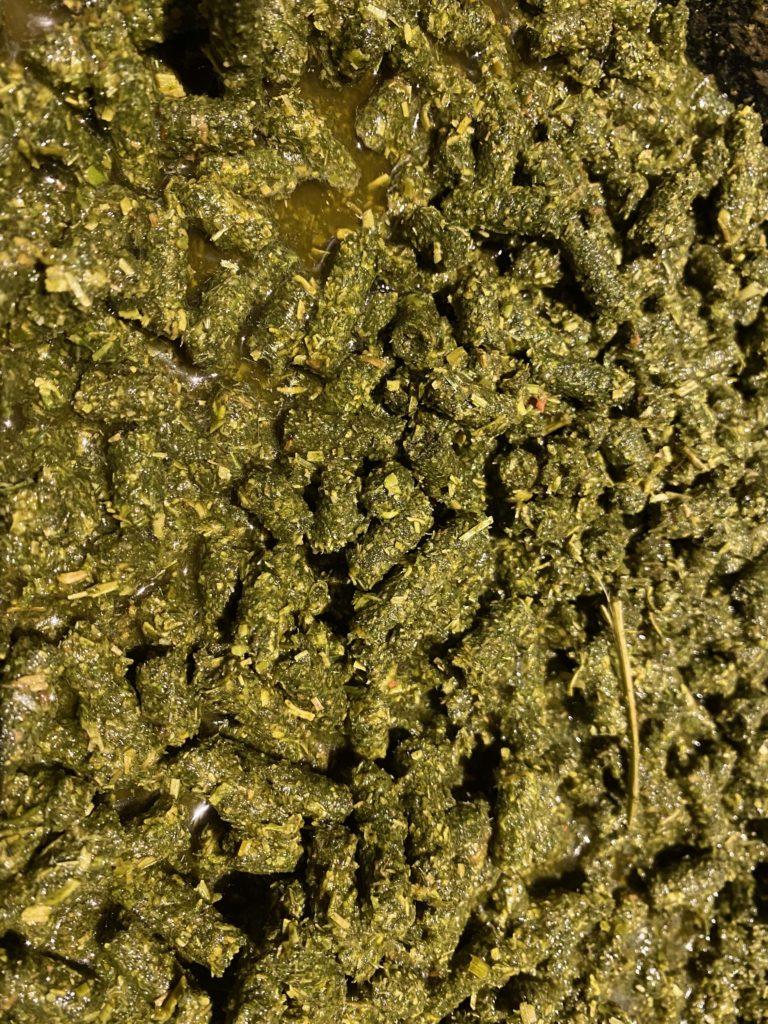 soaked alfalfa pellets