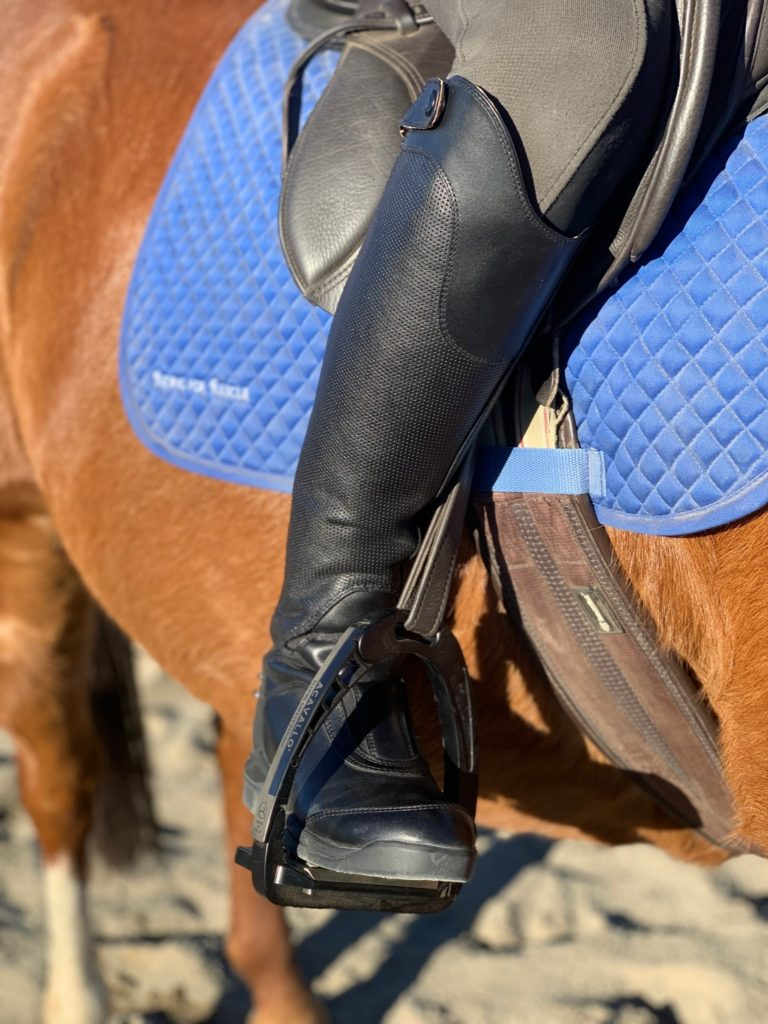 ariat v sport boot profile