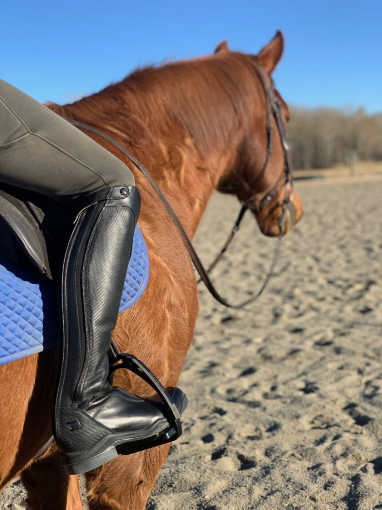 ariat v sport boot review