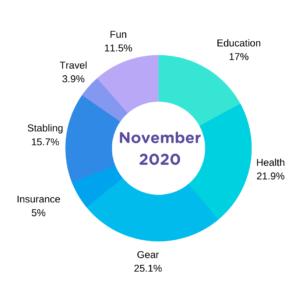 november horse expenses