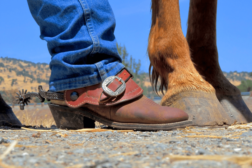 cowboy boot and horse legs
