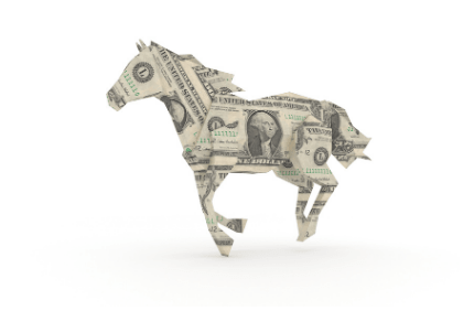 horse cash
