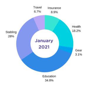january expenses