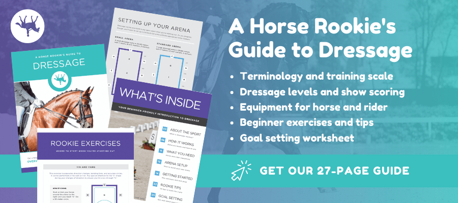 horse rookie's guide to dressage