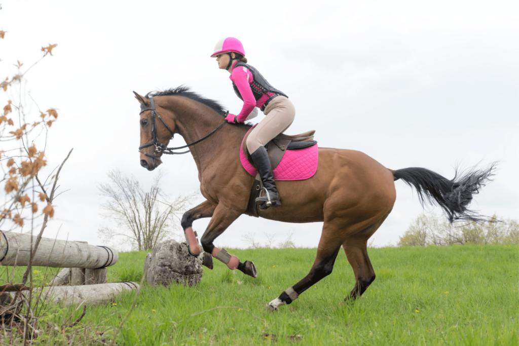 girl horse cross country