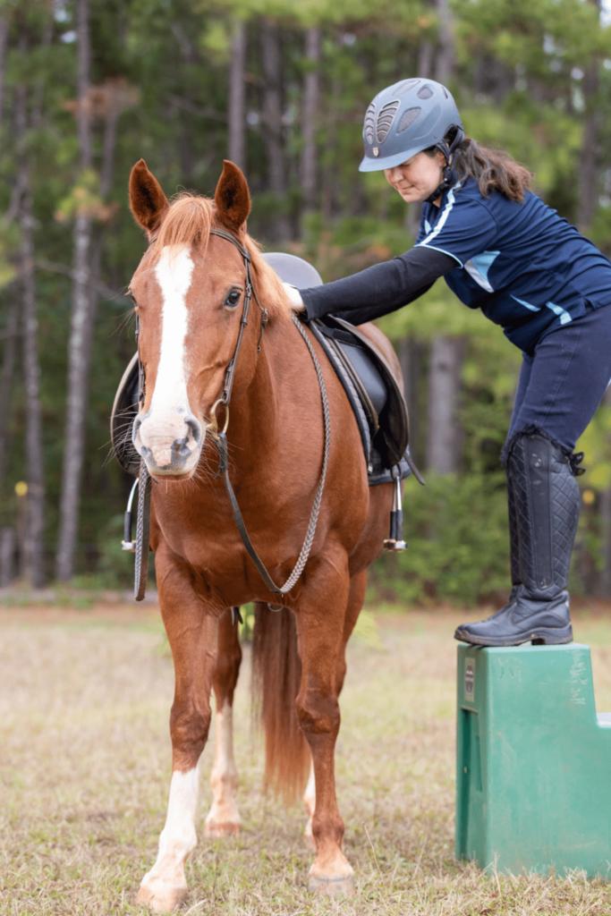 mounting block horse