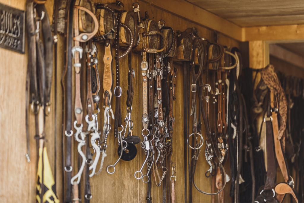 nice horse bridles
