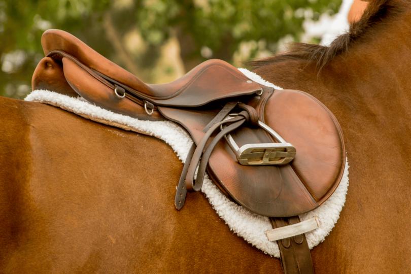 best english equitation saddles