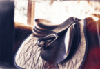 best english saddle for beginners