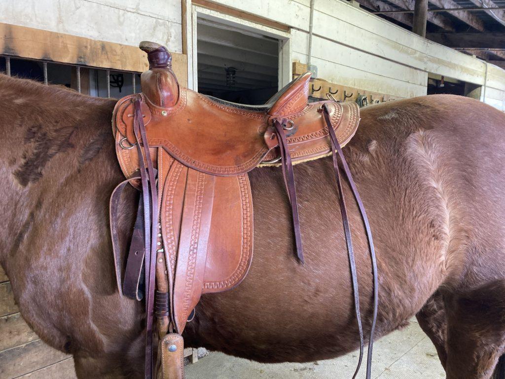 used saddle