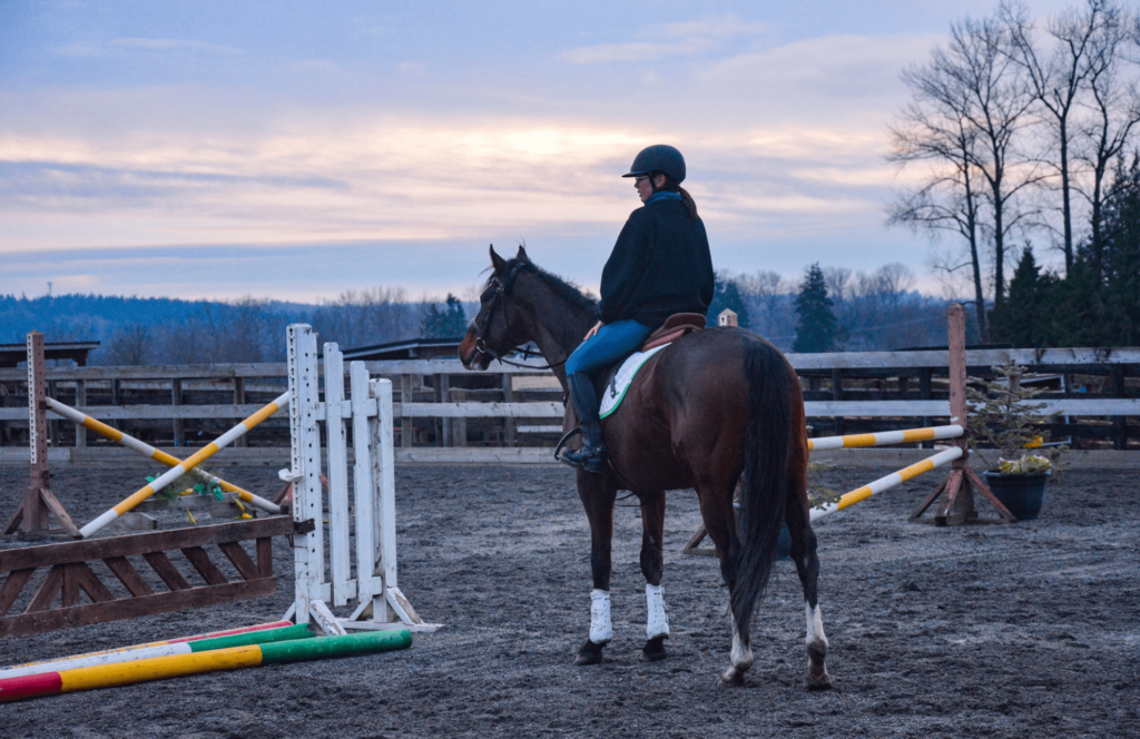 show jumping anxiety