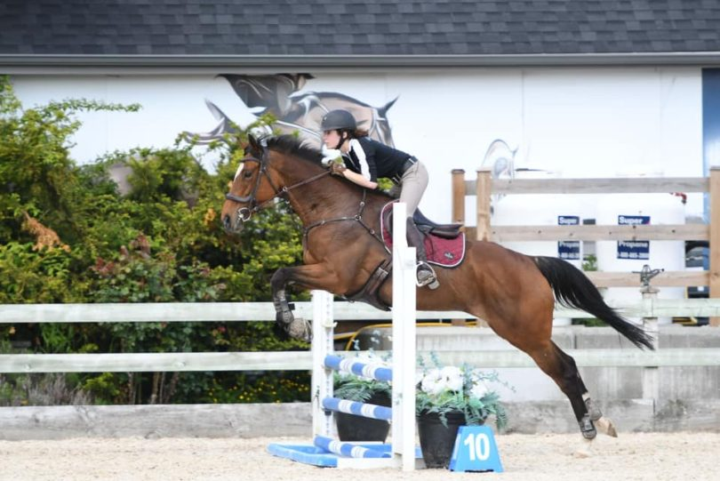 show jumping tips
