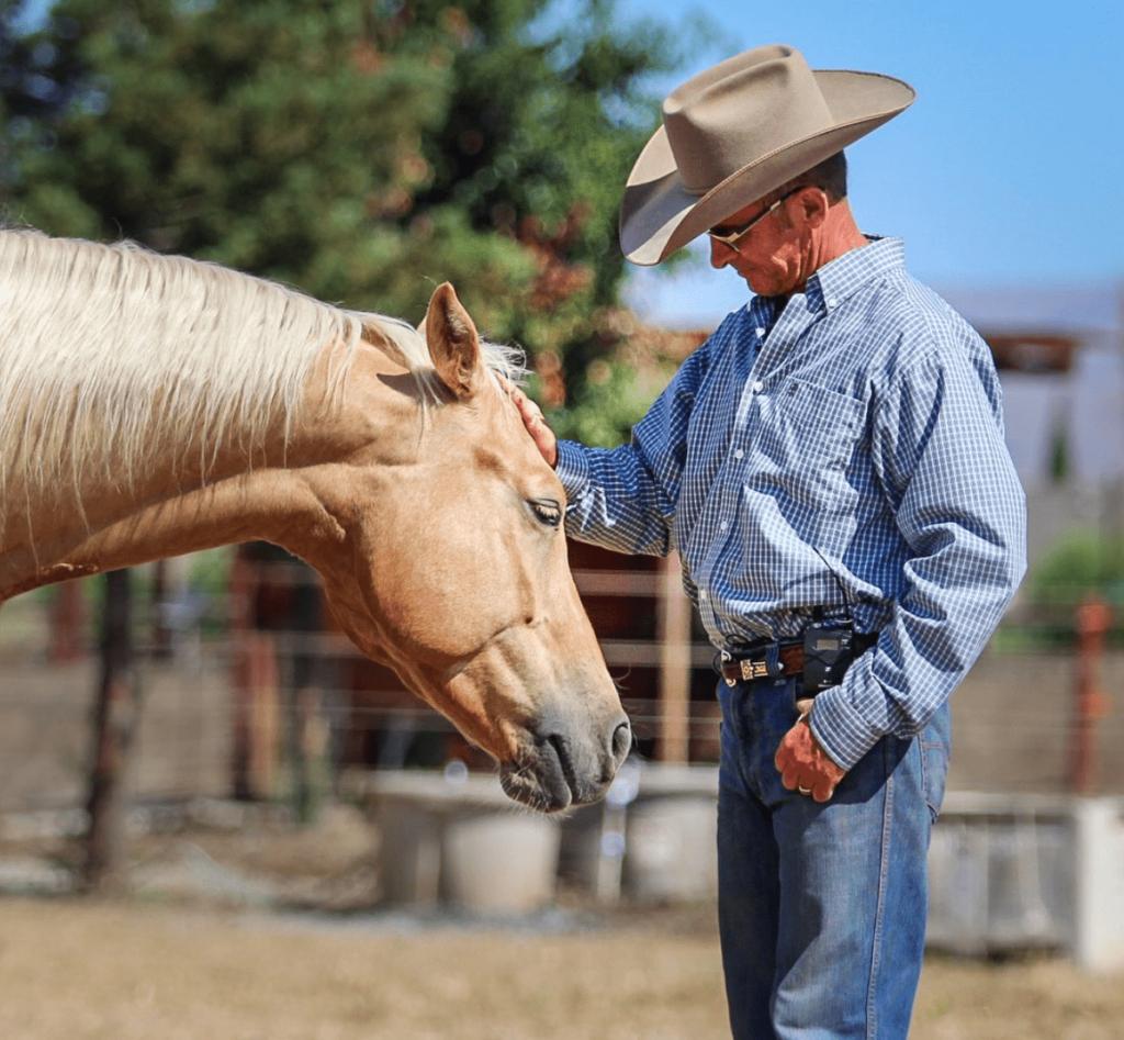 warwick schiller petting horse