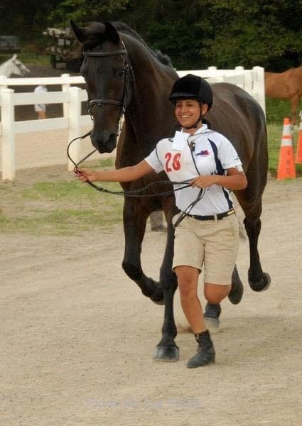martha jogging horse