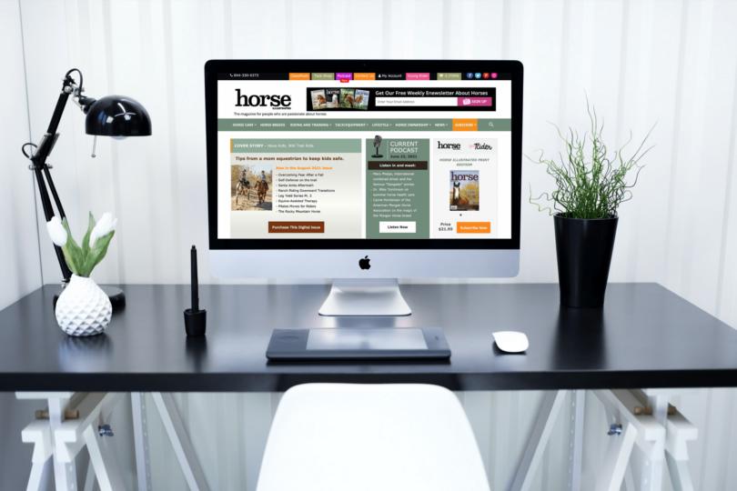 best websites about horses