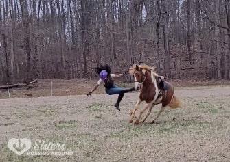 horse fall concussion