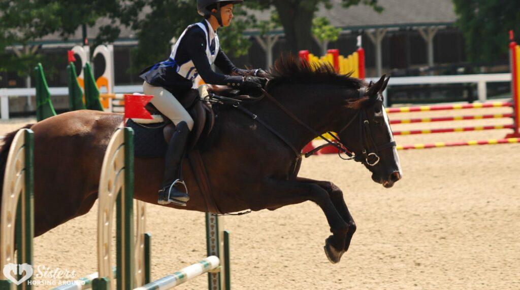 pony club jumping