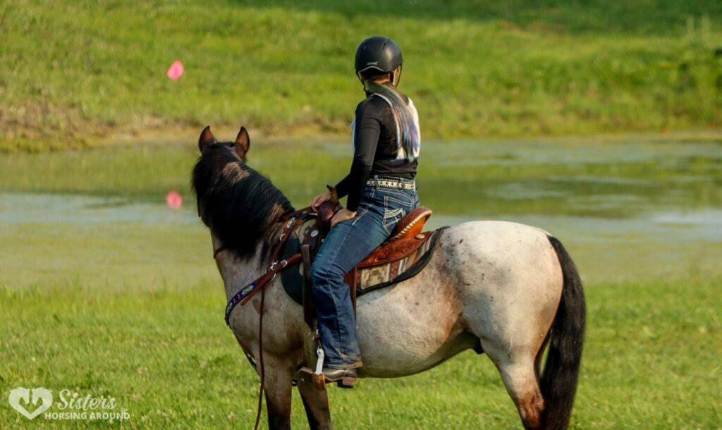 pony club western