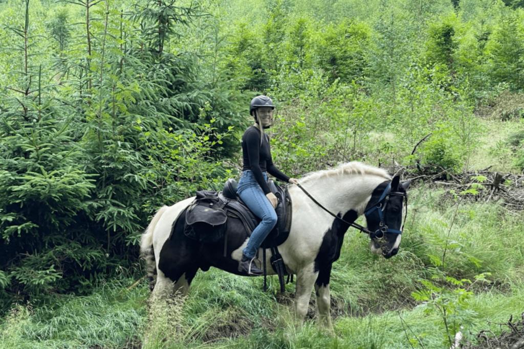 trail horse poland
