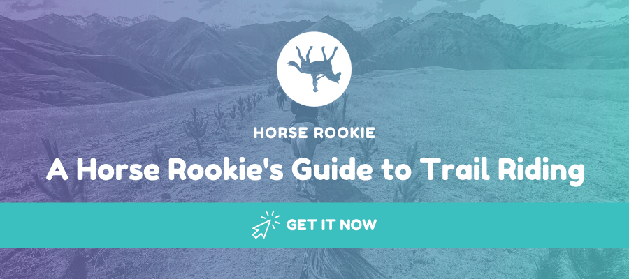 beginners trail riding guide