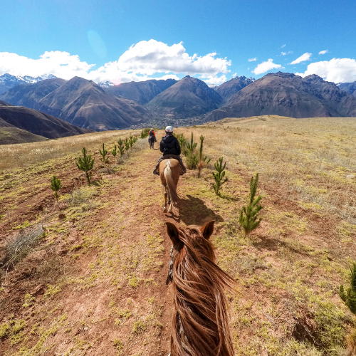 beginner trail riding guide