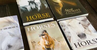 best horse coffee table books